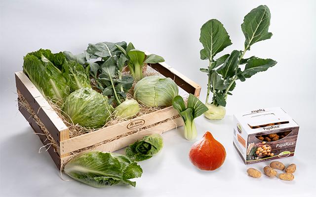 Las hortalizas y el día Mundial de la Salud
