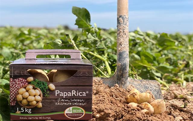 PapaRica®... ¡La patata por excelencia!